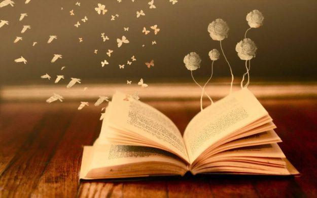 cropped-libro-abierto