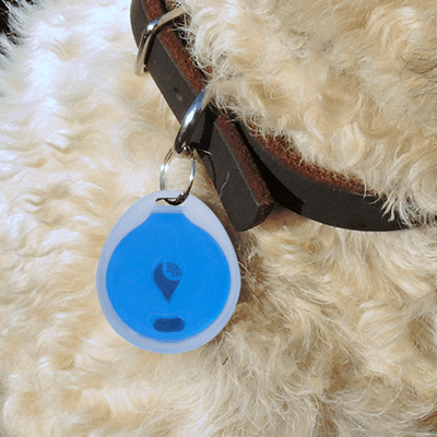 trackr-bravo-pet-collar-attachment-e9555ad4ebad3c7c64f0639228516cbe
