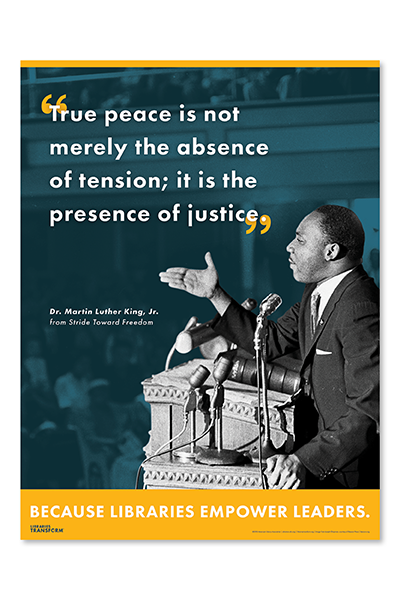 store-image-store-mlk-libraries-transform-poster
