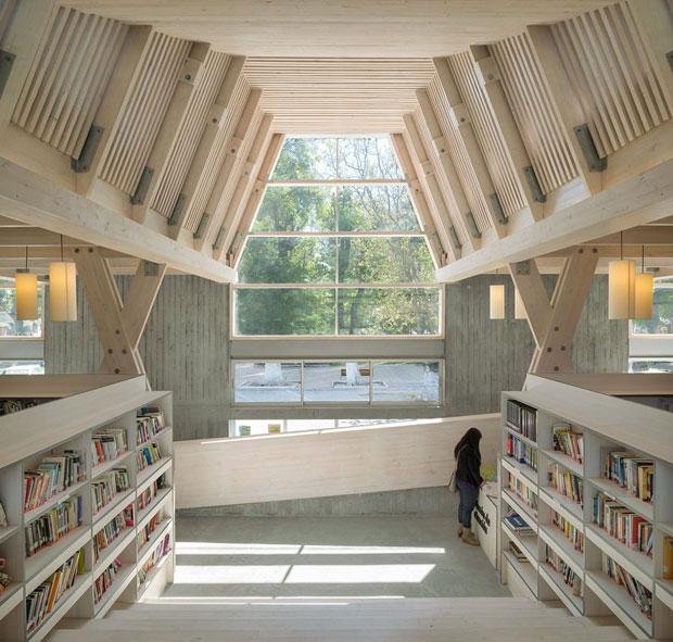 biblioteca pubblica, Constitución