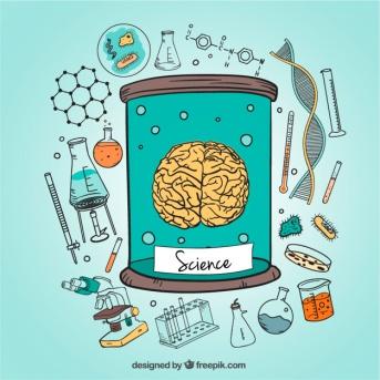 ilustracion-iconos-cerebro-humano-ciencia_23-2147504794